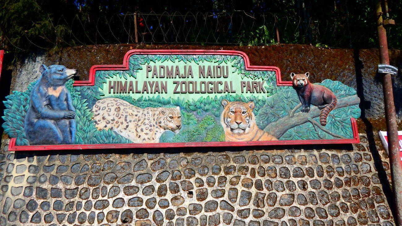 P.N. Zoological Park.jpg