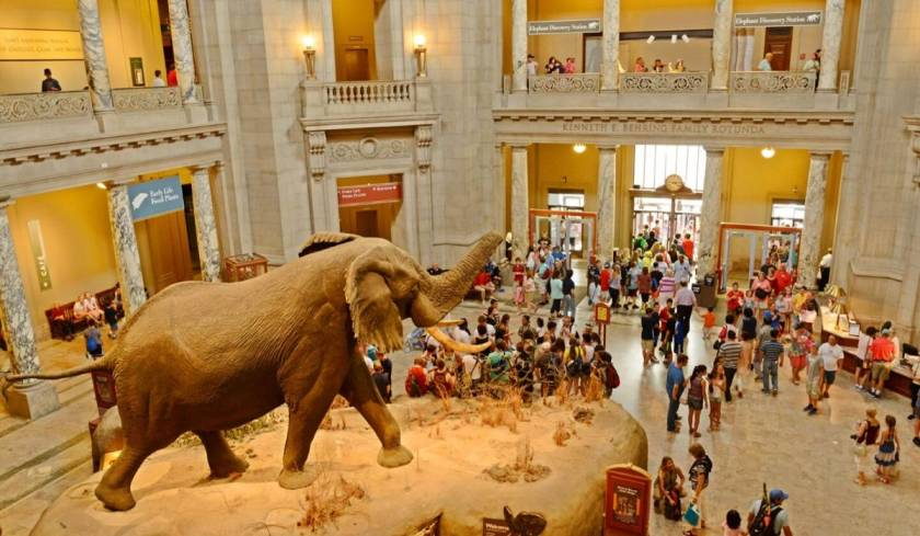 Smithsonian Museums.jpg
