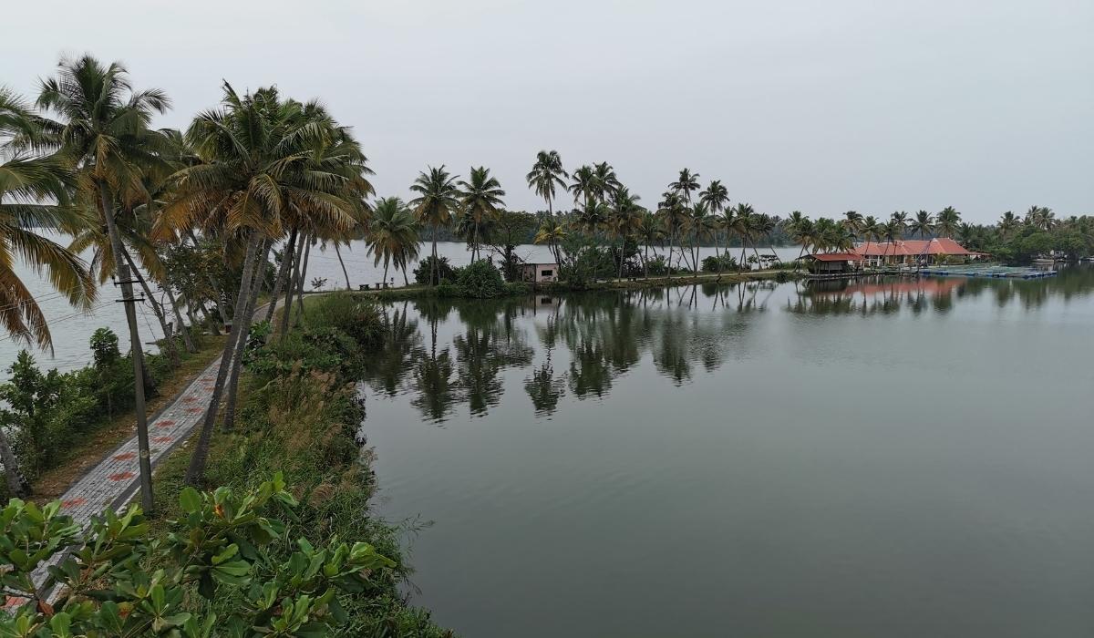 Vembanad Lake.jpg