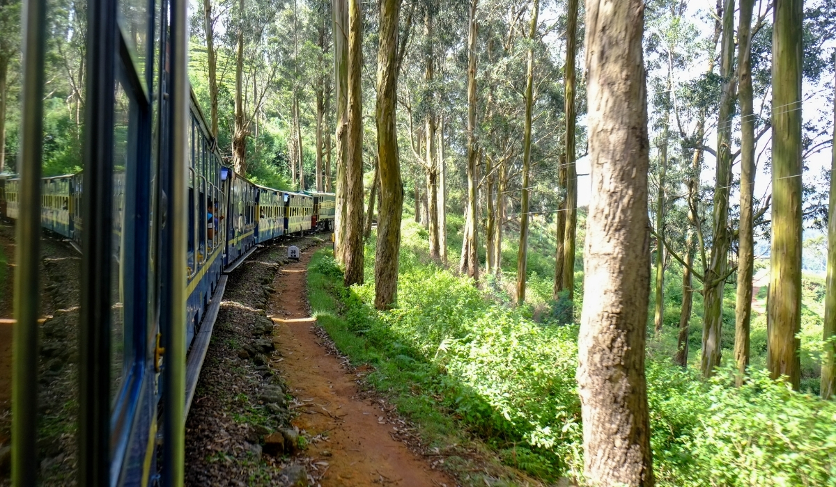 Nilgiri Mountain Railway.jpg