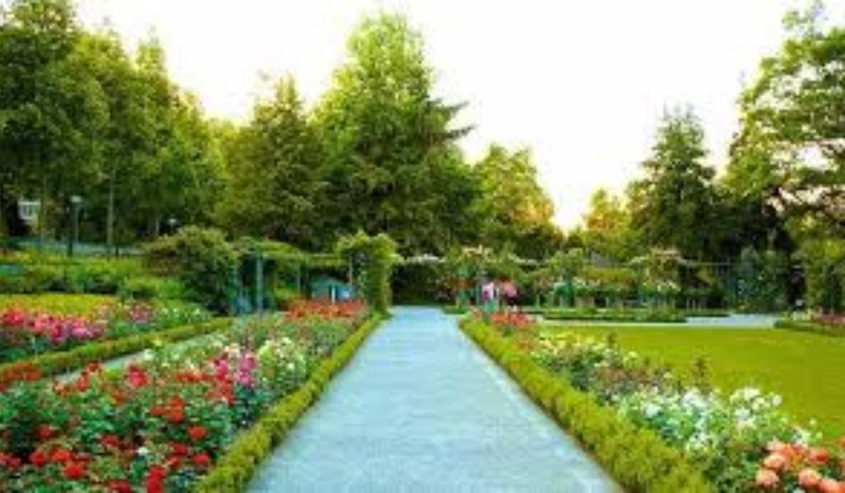 Zakir Hussain Rose Garden.jpg