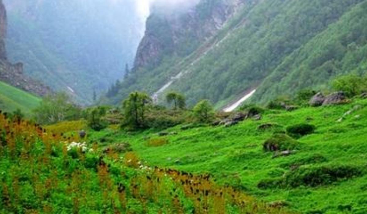 Himalayan Nature Park.jpg
