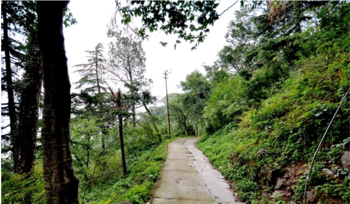 Gilbert Trail .jpg